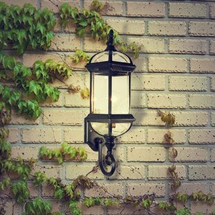 Compare & Buy Contemporary 1-Light Outdoor Wall Lantern By eTopLighting