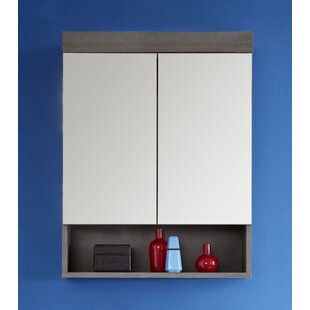 Vanzant 58 X 75cm Wall Mounted Mirror Cabinet By 17 Stories