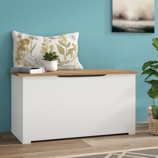 Campagna Storage Hallway Bench By Hashtag Home