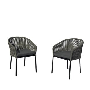 Euart Patio Dining Chair with Cushion (Set of 2)