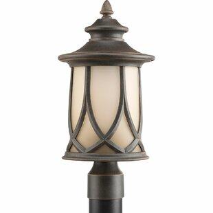 Triplehorn 1-Light Etched Lantern Head by Alcott Hill