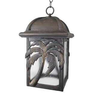 Top Reviews Penfield 1-Light Outdoor Hanging Lantern By Alcott Hill