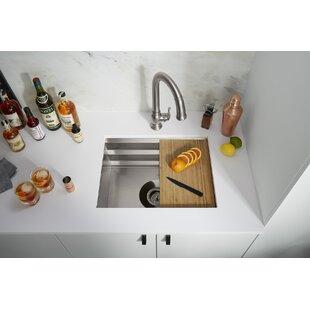 Kohler Prolific 23 in x 17-3/4 in x 10 in Under-Mount Single-Bowl Kitchen Sink with Accessories