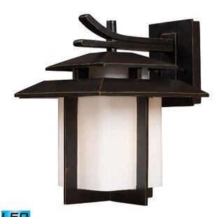 Great Price Baily 1-Light Outdoor Wall Lantern By Brayden Studio