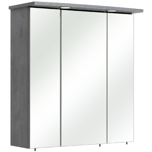 Hanau 65 X 72cm Mirrored Wall Mounted Cabinet By Quickset