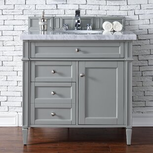 Deleon Traditional 36 Single Urban Gray Bathroom Vanity Set by Darby Home Co