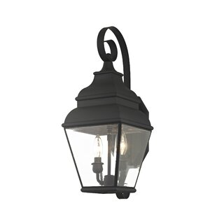 Credle 2-Light Outdoor Wall Lantern