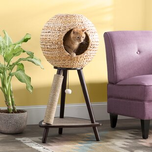 Modern Cat Furniture You Ll Love In 2019 Wayfair