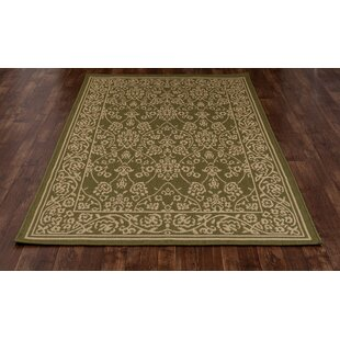 Beaminster Green/Beige Indoor/Outdoor Area Rug