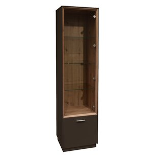 Haygood Display Cabinet By 17 Stories