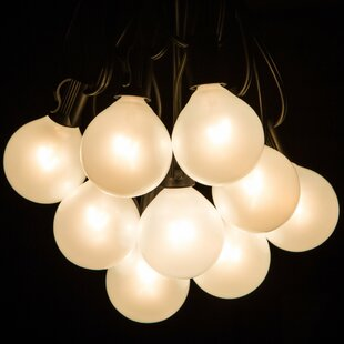 50-Light Globe String Lights
