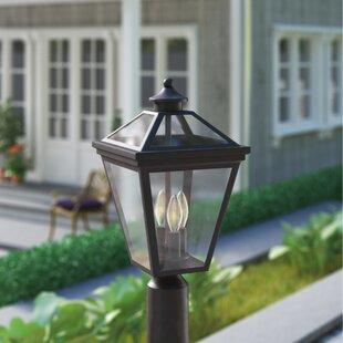 Darby Home Co Coleg 3-Light Lantern Head
