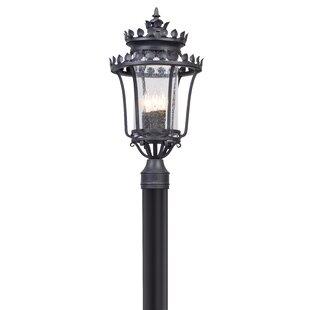Colfax Outdoor 3-Light Lantern Head by Fleur De Lis Living