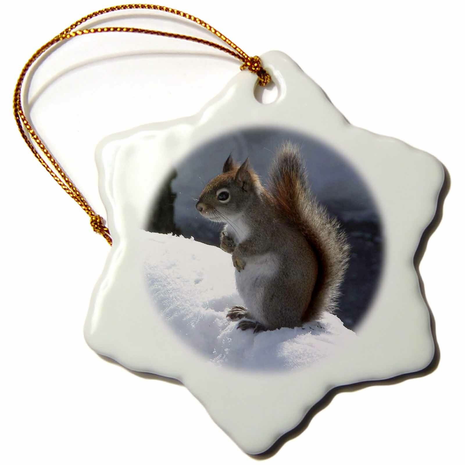 The Holiday Aisle Squirrel In The Snow Holiday Shaped Ornament Wayfair