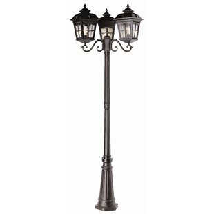Best Reviews Freeborn 3-Light 86 Post Light By Darby Home Co