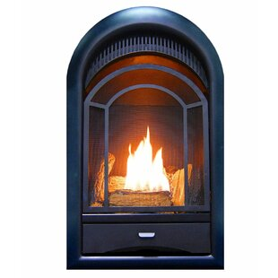 Heating Arched Door Vent Free Propane/Natural Gas Fireplace Insert By ProCom