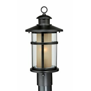 Enger Outdoor 1-Light Lantern Head by Breakwater Bay