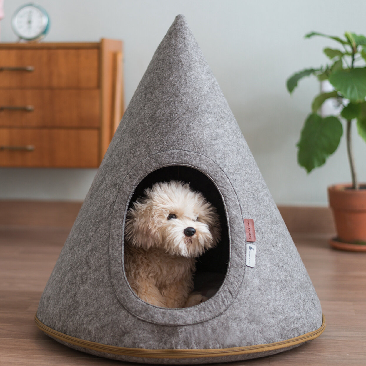 Picture of: Tucker Murphy Pet Boisvert Felt Pet Cave Toby Hooded Reviews Wayfair