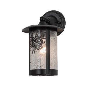 Shop For Greenbriar Oak 1-Light Outdoor Wall Lantern By Meyda Tiffany