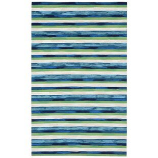 Hugo Hand-Woven Blue/Green Indoor/Outdoor Area Rug