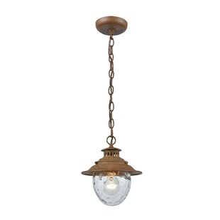 Avon 1-Light Outdoor Pendant
