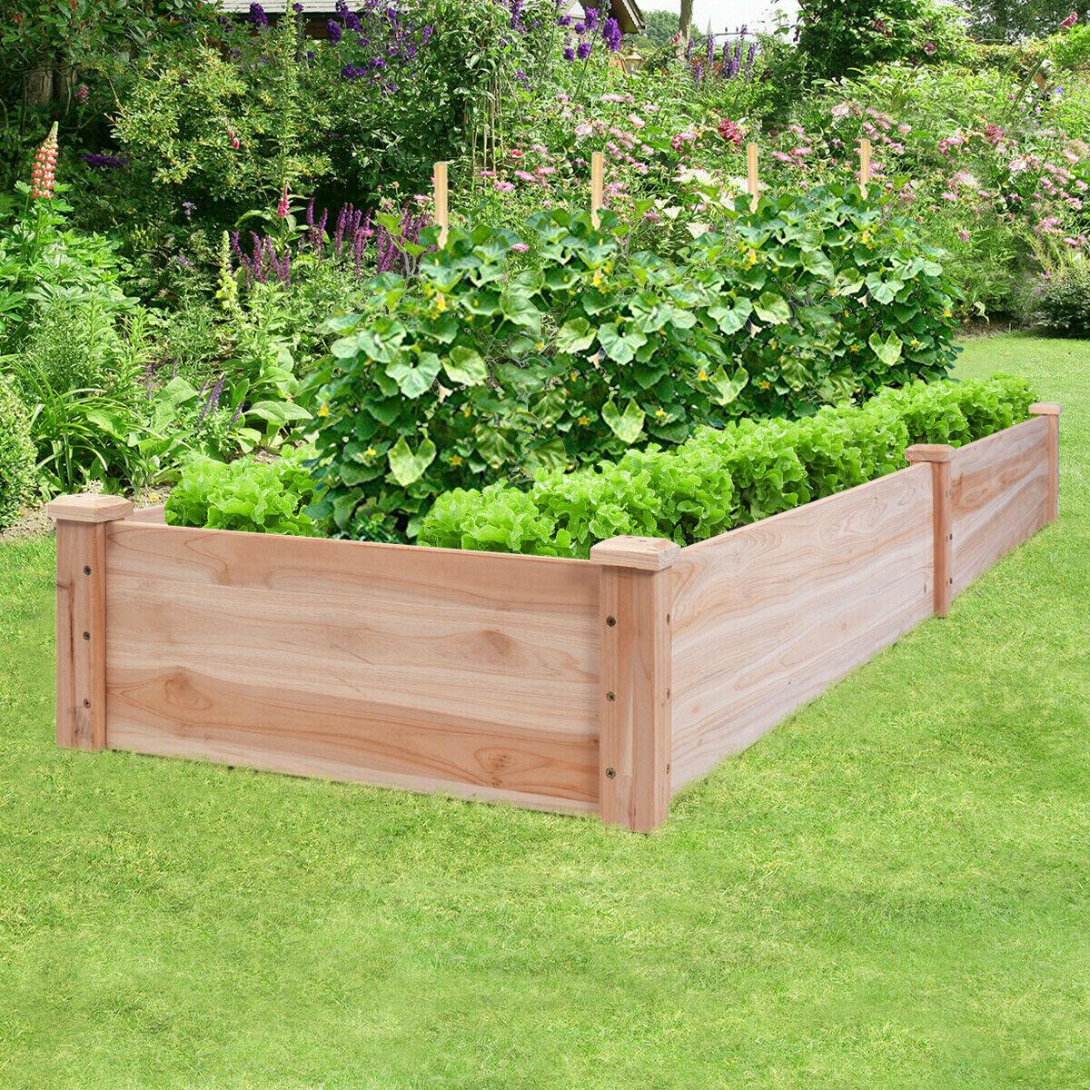 Richard Vegetable Garden 6 ft x 6 ft Cedar Wood Raised Garden