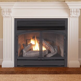 Vent Free Recessed Natural Gas/Propane Fireplace Insert by Duluth Forge