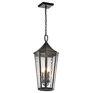Order Woodlawn 4-Light Outdoor Hanging Lantern By Darby Home Co