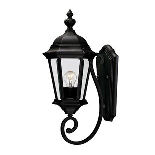 Bargain Randel 1-Light Outdoor Sconce By Charlton Home
