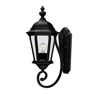 Randel 1-Light Outdoor Sconce