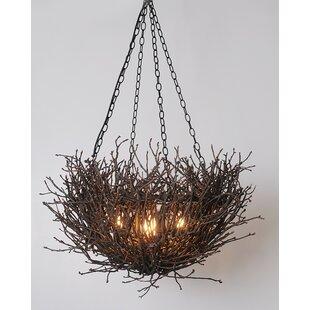 Tree branch chandelier wayfair torres nest branch twig 5 light novelty chandelier aloadofball Image collections