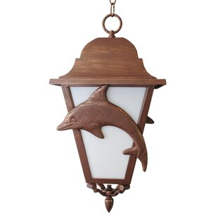 Affordable Penfield 3-Light Outdoor Hanging Lantern By Alcott Hill