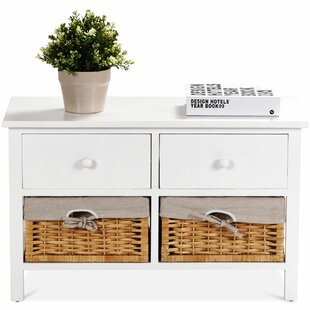 Mapleview Unit Baskets 2 Drawer Accent Chest by Breakwater Bay