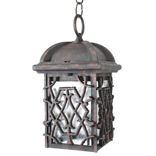 Top Penfield 1-Light Outdoor Hanging Lantern By Alcott Hill