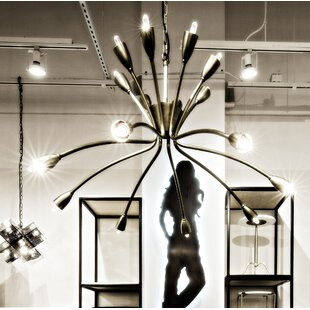 Noir Lexa 16-Light Chandelier