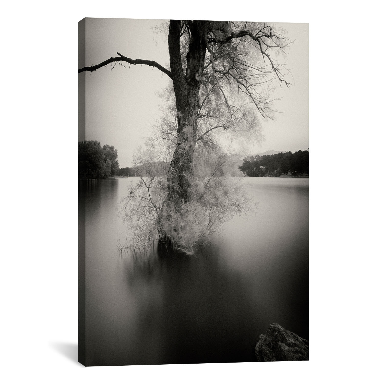 Ebern Designs Surfactant Photograph Print On Canvas Wayfair