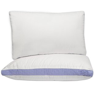 Iso Pedic Hypoallergenic Extra Firm Lumbar Polyfill Pillow (Set of 2)