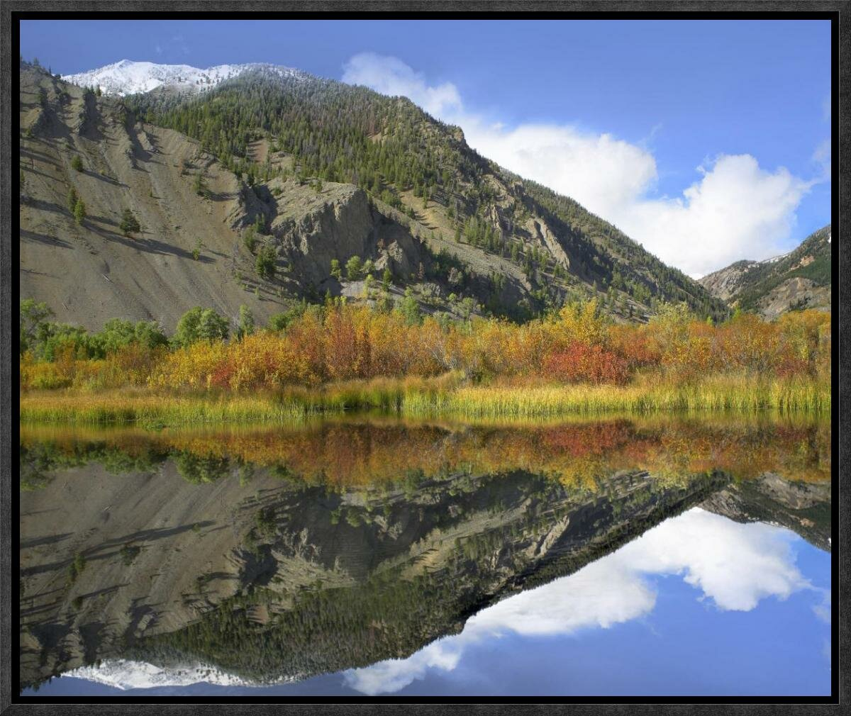 Idaho Canvas Picture Art Boulder Mountains Reflections in Beaver Pond