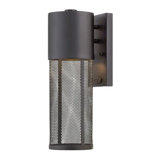 Brayden Studio Proulx 1-Light Outdoor Sconce