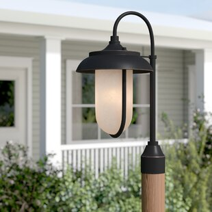 Gracie Oaks Bentleyville Outdoor 1-Light LED Lantern Head