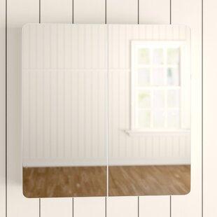 Review Adelphi 60cm X 61cm Surface Mount Mirror Cabinet