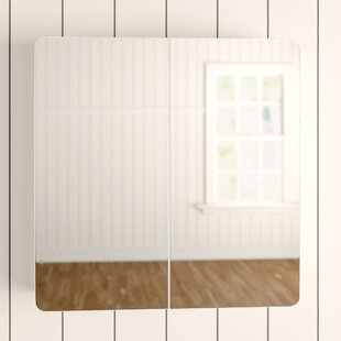 Free Shipping Adelphi 60cm X 61cm Surface Mount Mirror Cabinet