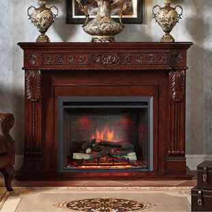 Armes Fireplace Insert by Loon Peak
