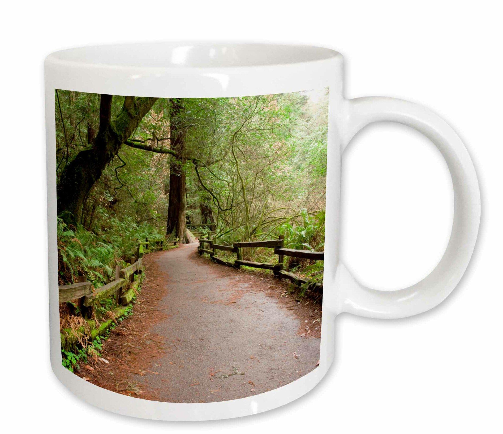 East Urban Home California Marin County Muir Woods Nm Path Coffee Mug Wayfair