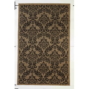 Dyar Brown/Black Indoor/Outdoor Area Rug