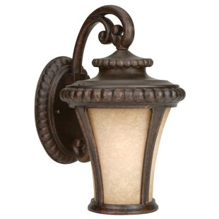 Affordable Price Oakhill Scavo Glass 1-Light Outdoor Wall Lantern By Charlton Home