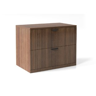 Latitude Run Averill 2-Drawer ..
