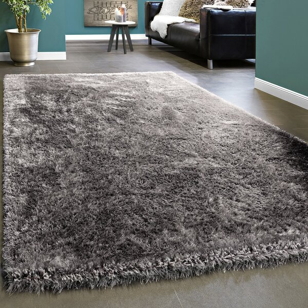 Glitter Rug Wayfair Co Uk