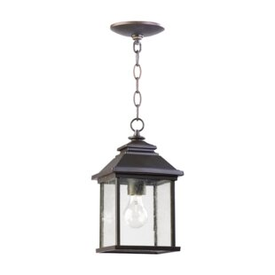 Price comparison Hampstead 1-Light Clear Shade Outdoor Hanging Lantern By Three Posts