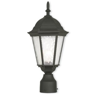 Darby Home Co Busse 1-Light Lantern Head